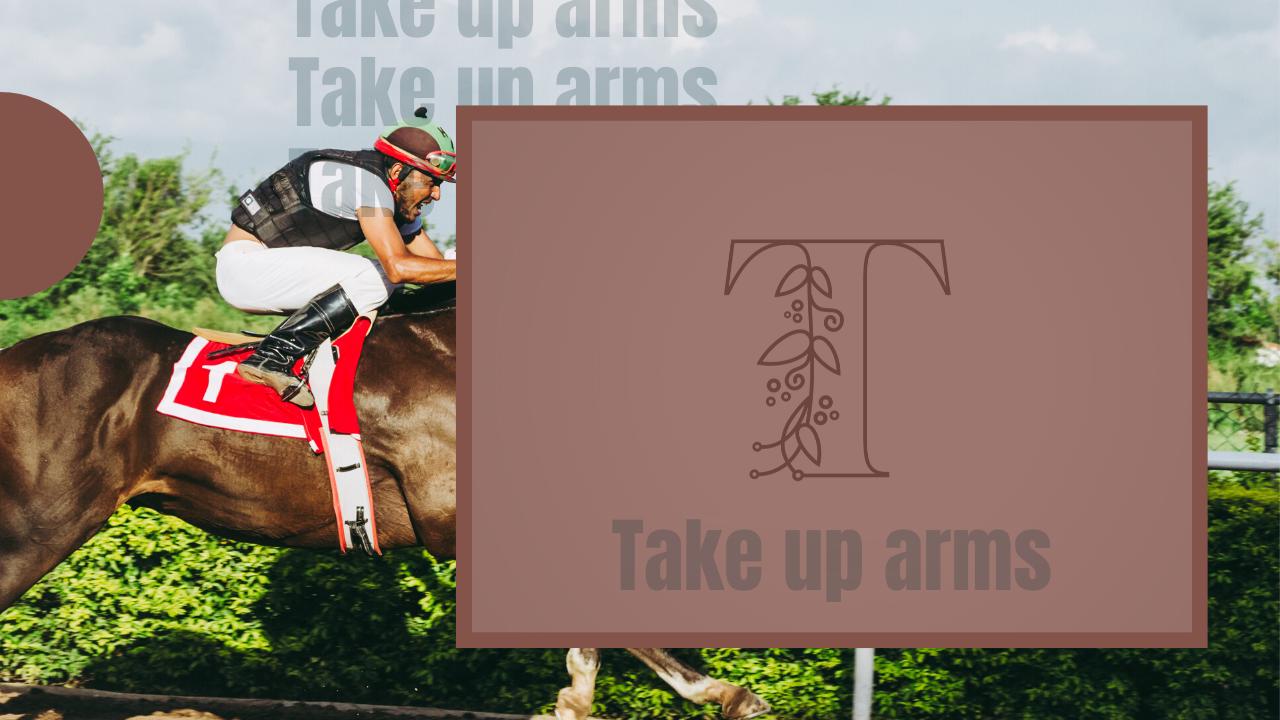 Take up Arms【テイクアップアームズ】